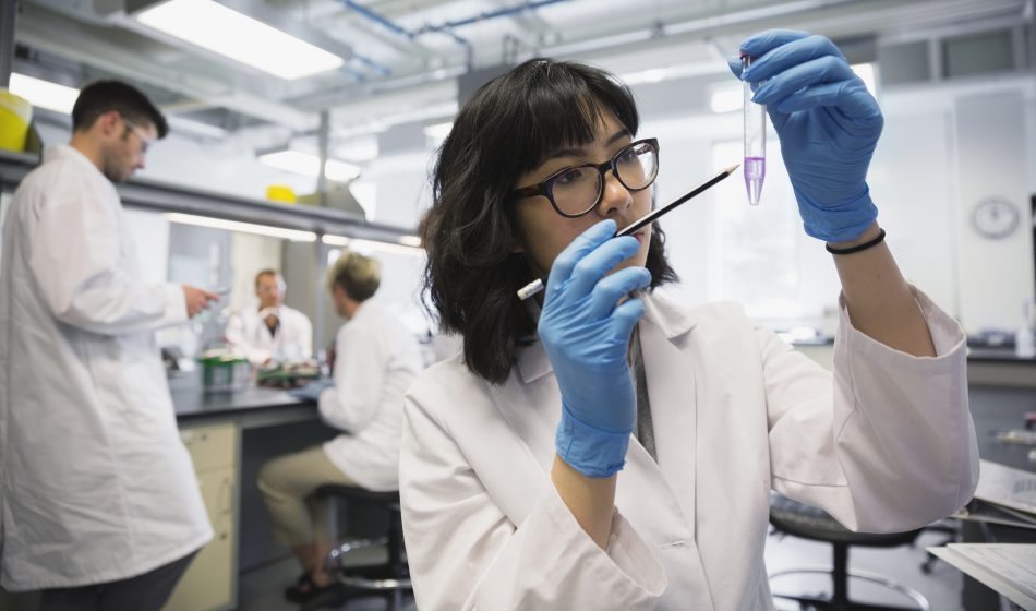 Scientist examining liquid in test tube in laboratory